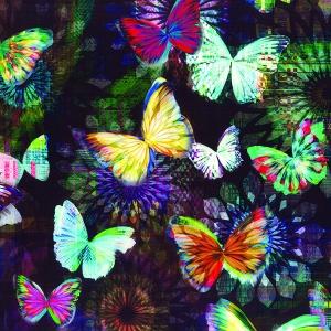 Challenge Fabric N4240 213-Onyx