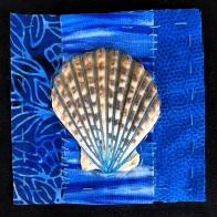 Sea shell (series